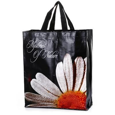 Color Printed PP Shopping Bag, Customized Sizes and Designs are Accepted