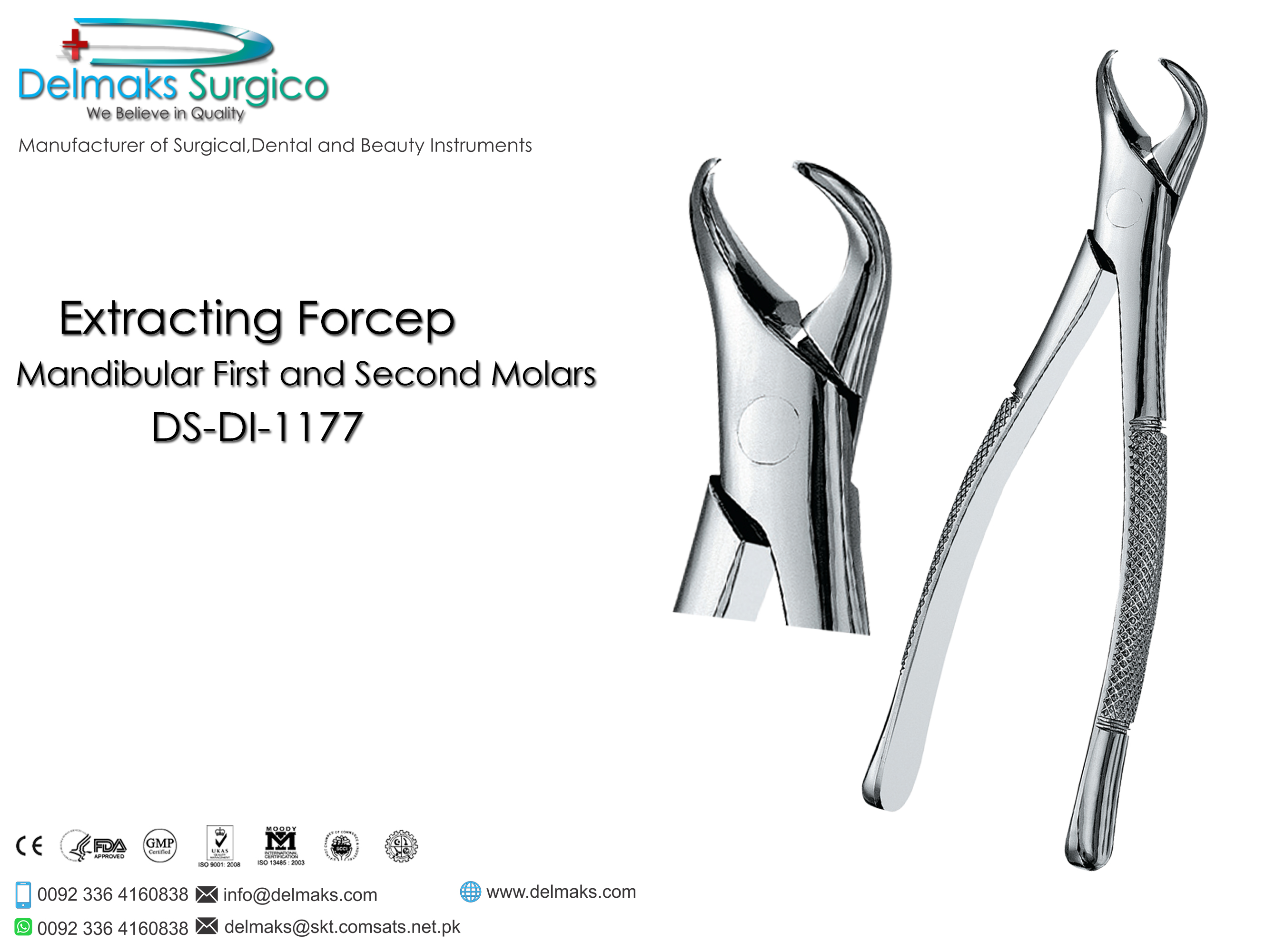 Extracting Forcep Mandibular First and Second Molars-Oral and Maxillofacial Surgery Instruments-Dental Instruments-Delmaks Surgico