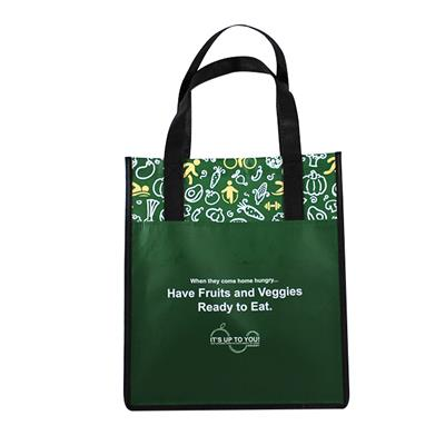 Cheapest Non Woven Laminated Promotion Shopping Bag