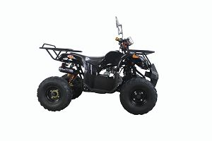 50-110cc ATV Off Road Using For Adults And Kids Enjoyment