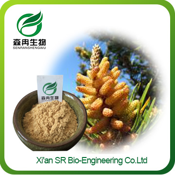 Pine Pollen Extract Powder,Factory Supply Organic Pine Pollen Powder,Wholesale Raw Pine Pollen Powder