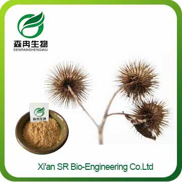 Burdock Seed Extract,Factory Supply Top Quality Burdock Extract,Hot Sale Burdock Powder