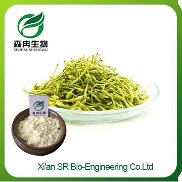 Honeysuckle Extract,Pure Natural Factory Supply Honeysuckle Powder,High Quality Honeysuckle Flavor Extract
