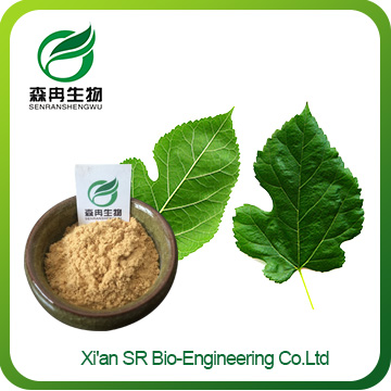 Mulberry Leaf Extract,Factory Supply High Quality Mulberry Leaf Extract Powder,mulberry Leaf Extract Weight Loss