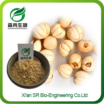 Fritillary Extract,High Quality Fritillary Bulb Extract,Wholesale Chuan Bei Powder
