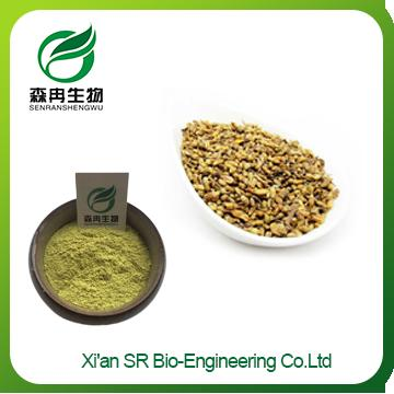Sophora Japonica Extract,Factory Supply Organic Sophora Japonica Extract