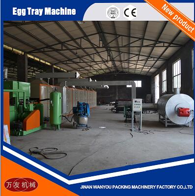 Factory Price Paper Egg Tray/Egg Carton/Fruit Tray Making Machine with High Quality