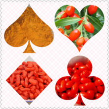 Best Price 100% Natural Goji Berry Extract With High Quality.