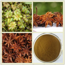 Hot Sale 99% Star Anise Extract , Shikimic Acid Illicium Verum Extract.
