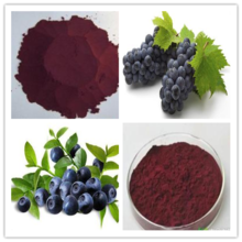 Best quality lowest price Skin Antioxidant 100% Natural Blueberry Extract Anthocyanins