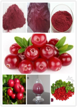 High Quality Anti-aging Pure Natural Cranberry Extract Powder
