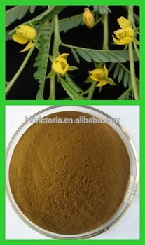 Pharmaceutical and Food grade Pure Natural Cassia Nomame, Flavanol Extract Powder