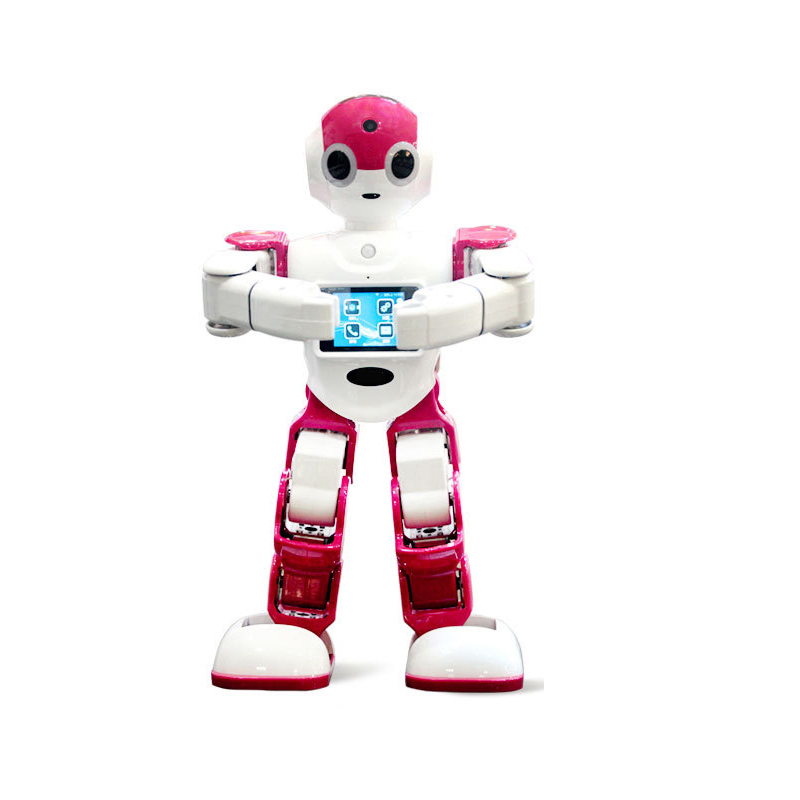 Interactive Robot Remote Controlled Humanoid Robot 3D Programmable Robot Toy Servo Acuator