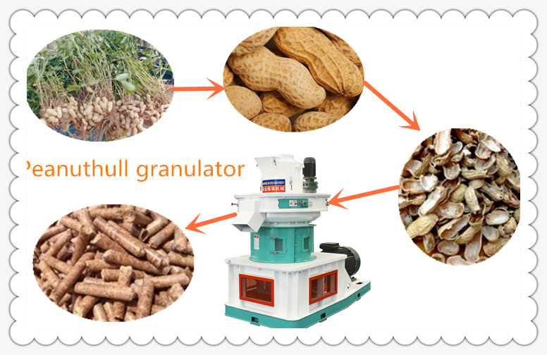 3t/h Peanuthull pelletizer manufacturers price -JIngeui