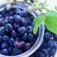 Sweetberry Anthocyanin