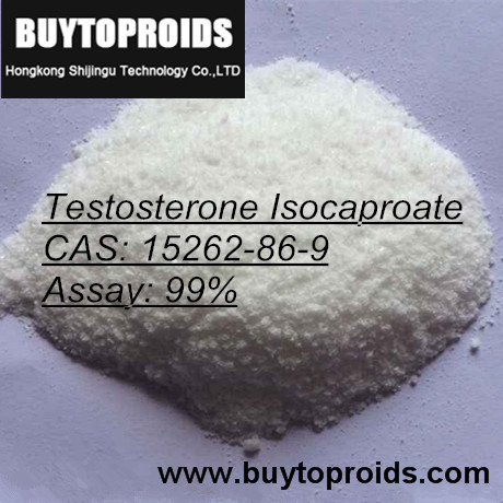 Pure Testosterone Isocaproate Powder Steroids Buy Hormone Online