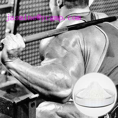 Bodybuilding for man with Stanolone 521-18-6