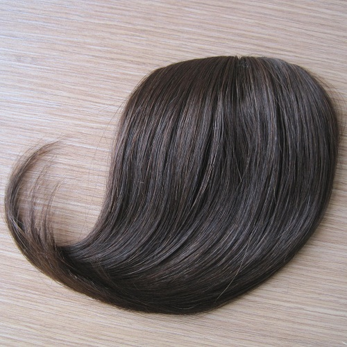 Soft Smooth Cheap wholesale 100% human hair bang