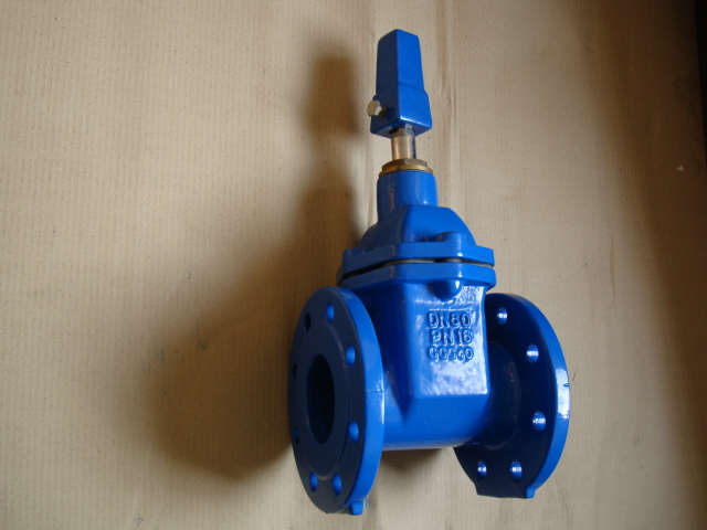 BS5163 Resilient Seated NRS GATE VALVE