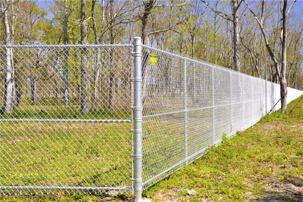 PVC Coated Vinyl Galvanized Chain Link Fence