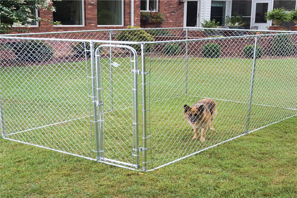 Chain Link Pet Enclosure Dog Kennel