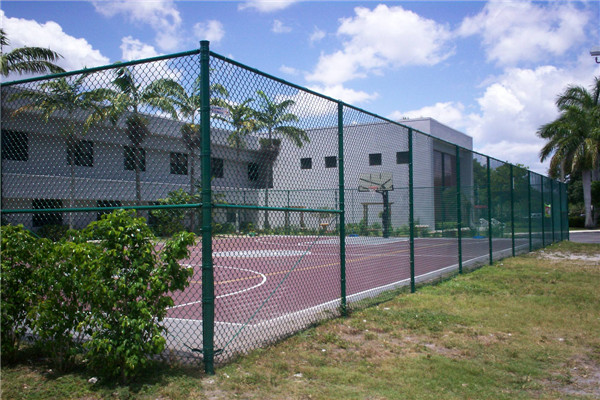 Chain Link Sports Fence