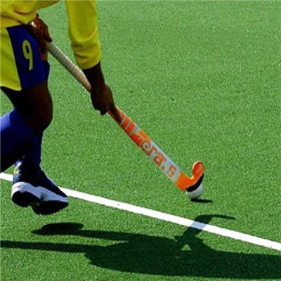 Sports Artificial Grass For Hockey
