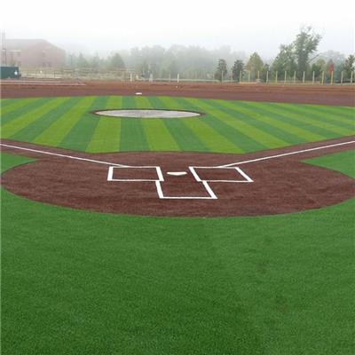 Sports Artificial Grass For Baseball