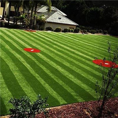 Sports Artificial Grass For Stadiums