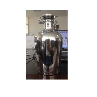 2.0 L Stainless Steel Insulated Beer Growler