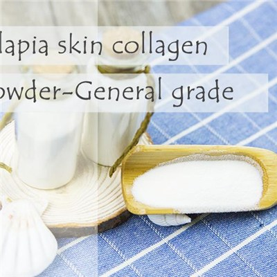 Fish Collagen Tilapia Skin Collagen Powder -General Grade