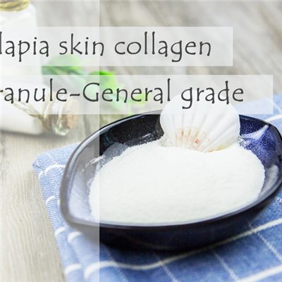 Fish Collagen Tilapia Skin Collagen Granule-General Grade