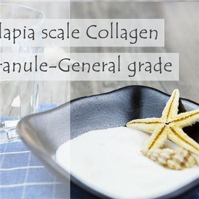 Fish Collagen Tilapia Scale Collagen Granule-General Grade