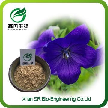 Bellflower Extract ,Factory Supply High Quality Platycodon Extract,Wholesale Balloon Flower Root Extract
