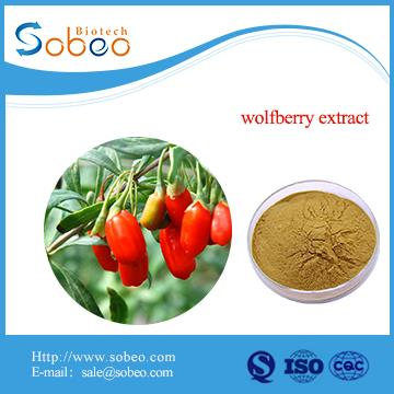 High Quality Natural Organic Goji Berry Powder Wolfberry Extract Powder