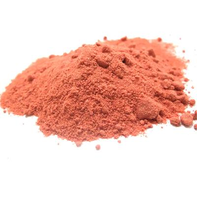 Strawberry Powder / Strawberry Extract Powder / Strawberry Juice Powder