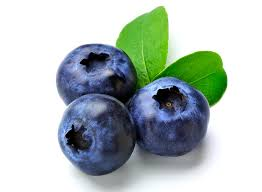 Blueberry Extract, Professional Factory Supply Best Pure Natural Blueberry Extract, Green Healthy Fruit Extract