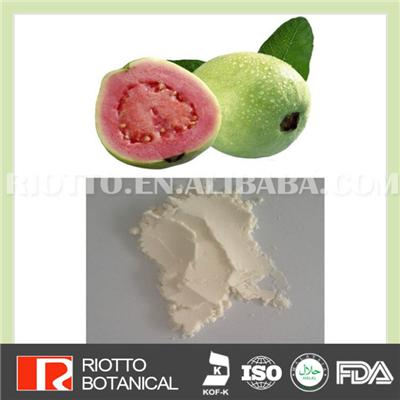 Guava Powder, Professional Factory Supply Top Quality Pure Natural Green Guava Powder, Best Price