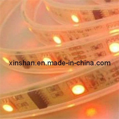 Low voltage 12mm high lumen SMD 3528  RGBWW/RGBW flexible led strip