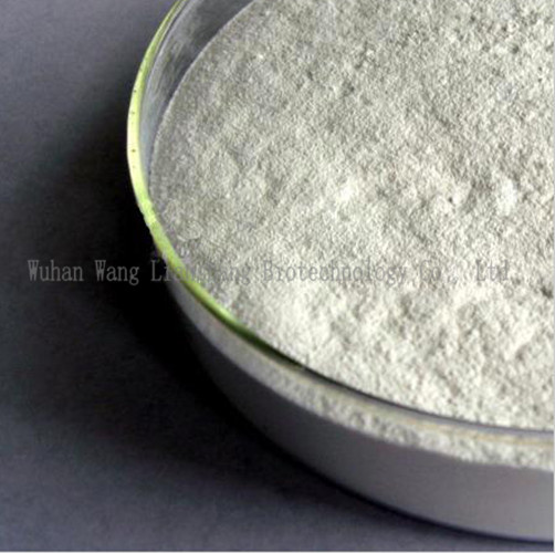 99% Pharmaceutical Intermediate Gamm-Butyrolactone/Blo/2-Oxolanone Solvent
