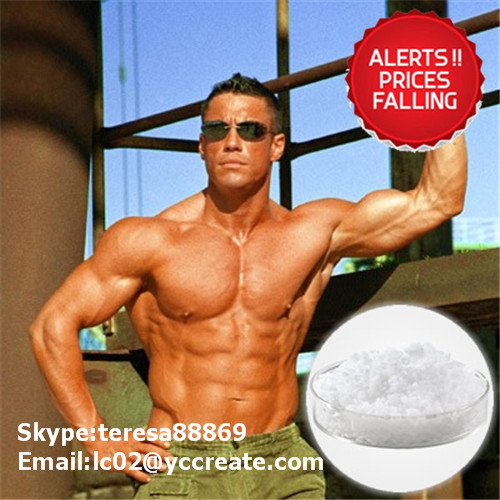 Anabolic Steroids Hormone 1255-49-8 Testosterone Phenylpropionate of Preventing Muscle Atrophy