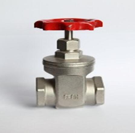 Gate valves 200PSI . SS304 SS316,Threaded :BSP,NPT, ISO 228-1
