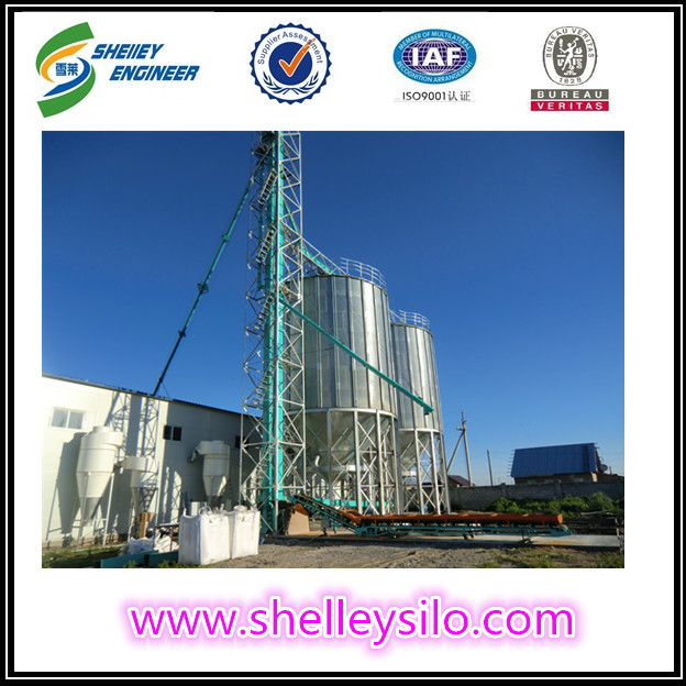 Z type steel chain grain bucket elevators