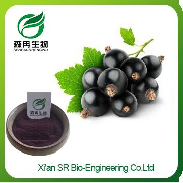 Organic Black Currant Powder ,Factory Supply Freeze Dried Blackcurrant Powder , High Quality Water Soluble Blackcurrant Extract