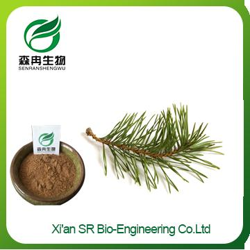 Pine Needle Extract,High Quality Hot Sale Siberian Red Pine Needle Extract,organic Pine Needle Powder