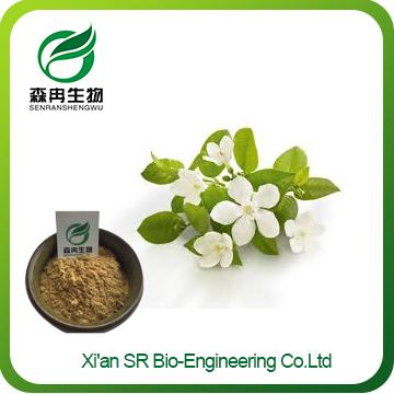 Orange Blossom Extract,Health Food High Quality Pure Natural Orange Blossom Powder,Factory Supply Neroli Extract