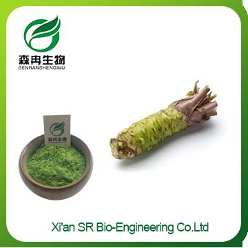 Wasabi Extract,High Quality Organic Wasabi Powder ,Pure Wasabi Powder