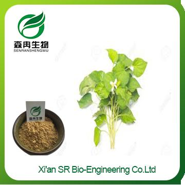 Heartleaf Houttuynia Herb P.E.,Factory Supply High Quality Houttuynia Extract