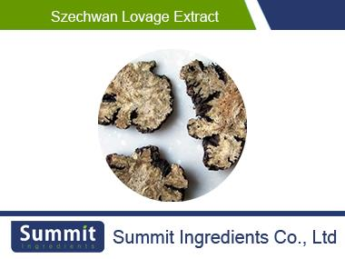 Szechwan lovage extract 10:1,Ligusticum wallichii,the rhizome of chuanxiong,Lovage Extract