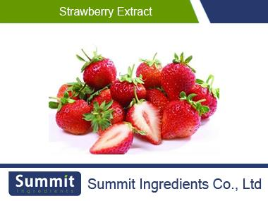 Strawberry extract,Strwberry Powder,Fragaria Anananassa Nipponica,Berries